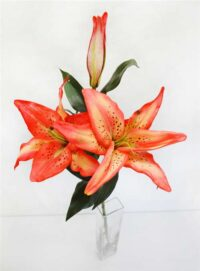 Casablanca Lily Orange - Real Touch