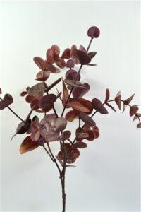 Eucalyptus Leaf Burgundy