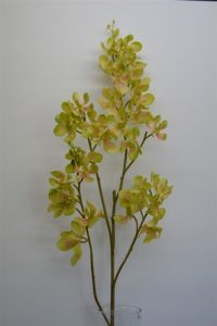 Vanda Real Touch Orchid Green