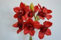 Cymbidium Orchid Bouquet Red with 3 stems