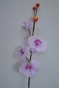 Phalaenopsis Orchid Spray Mauve/Lilac