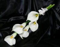 Ivory Calla Real Touch Sheaf Bouquet
