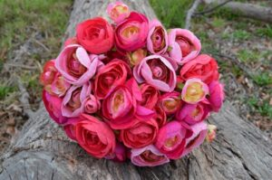 Ranunculus Two Toned Pink Wedding Posy
