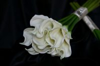 White Calla Lily Sheaf Bouquet