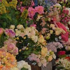 flowerdisplay2