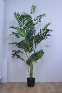 7' Bamboo Palm