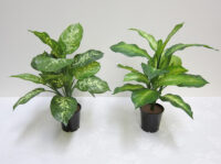 Small (Real-Touch) Greenery Bush