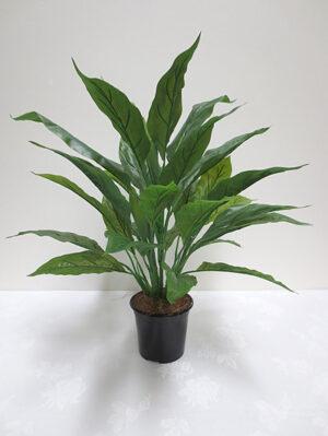 Spathiphyllum Leaf (Real Touch) Bush